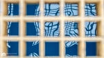 EOS 1100D-2014_10_01-13_16_00- 6973